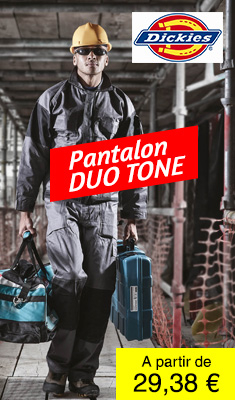 Pantalon DUO TONE Gris DICKIES - WD4930