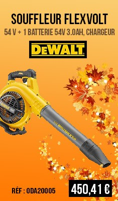 Souffleur DEWALT FLEXVOLT 54 V + 1 Batterie 54V 3.0Ah, chargeur - DCM572X1