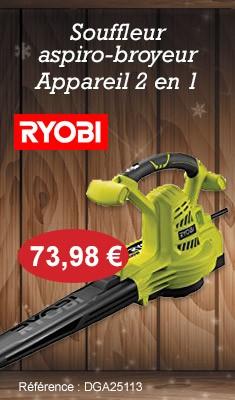 Souffleur aspiro-broyeur RYOBI RBV3000CSV - Appareil 2 en 1 - 3000W - 5133002188
