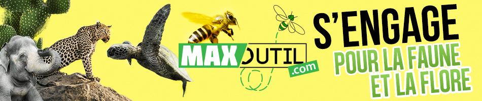Maxoutil Vert